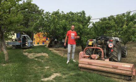 In giro per la Agricola di Belletti Pietro e Belletti Daniele di #Cesenatico da Gioia Emilia-Romagna.