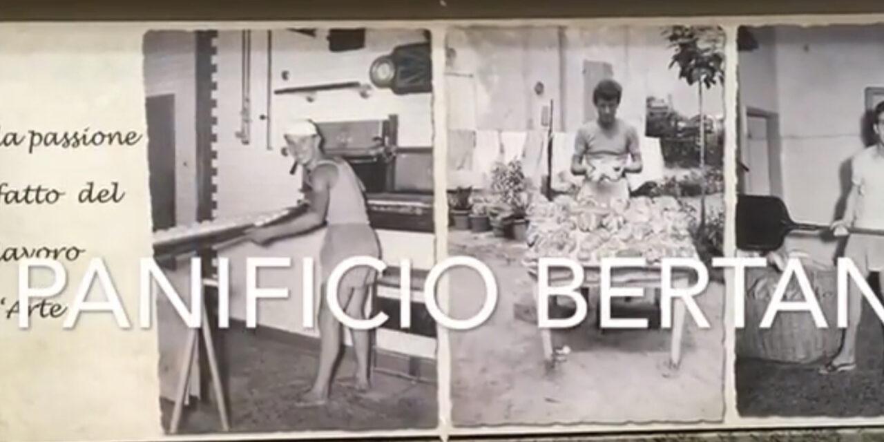PANIFICIO BERTANI DI CESENATICO. SERGIO BERTANI CI FÀ IL PANETTONE