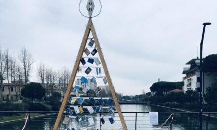 Ladri in azione a Cesenatico per un bottino di due faretti, che illuminavano l'Albero di Natale