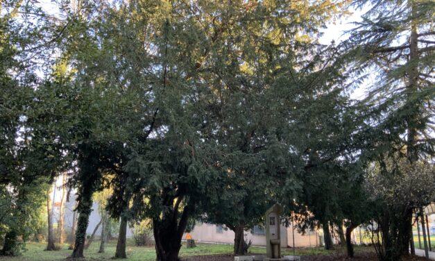 Cesenatico: tra Storia e progetti la Scuola secondo circolo Didattico  di Sala di Cesenatico