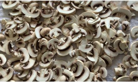 Qualche trucco per la cucina: congelare i funghi champignon