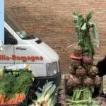Cesena: il mercato ambulante ed il suo reparto alimentare