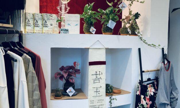 Cesenatico: Alice e Jonata ci porteranno nel mondo dei Kokedama