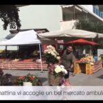 Gatteo Mare Cesenatico e Cervia da questa settimana i mercati sono in modalità estate