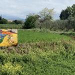 San Mauro Pascoli: Rio Salto inaugurazione della Celletta con l'immagine della Beata Vergine delle Grazie di Fiumicino